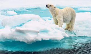 September On Svalbard Group Tour