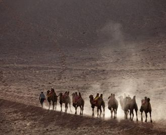 Silk Road Cities By Private Train - Almaty To Ashgabat 2020