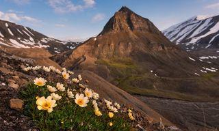 Svalbard Midnight Sun Adventure Group Tour