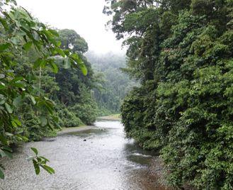 Borneo: Beyond The Ordinary