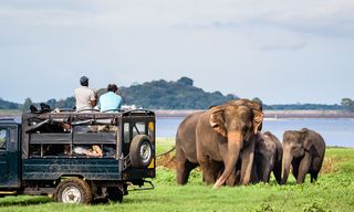 Family Trip to Sri Lanka