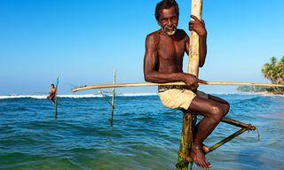 Sri Lankan Nature and Culture