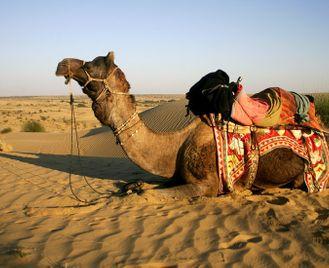 Desert of Thar to the Aravellis Mounts