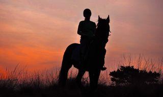 Horse ride through Assam