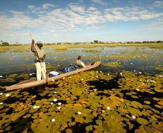 Botswana on the Move - Moremi, Khwai, Savuti, Chobe