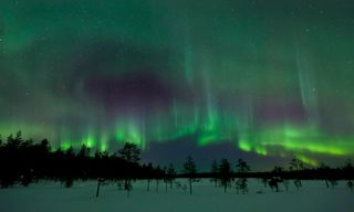 Rovaniemi - Aurora Hunting at the Arctic Circle Wilderness Lodge