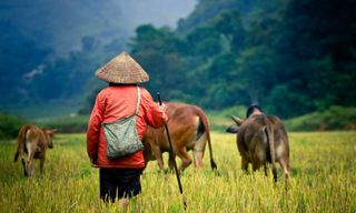 Vietnam off the beaten track