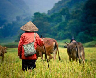 Vietnam off the beaten track