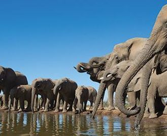 East Africa Highlights
