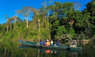 Amazon Jungle Tour
