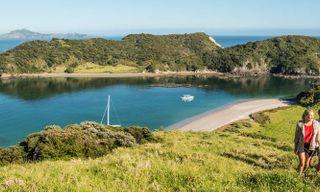 Wilderness Highlights Of New Zealand