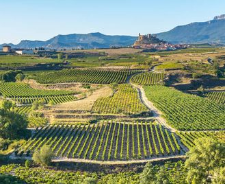 Rioja & Navarra Wine Route