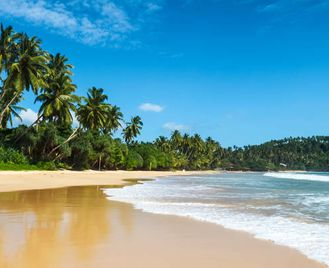 Sri Lanka's Ancient Kingdoms & East Coast Beaches