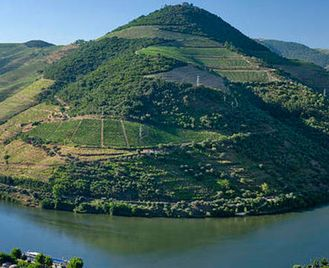Porto & Douro Valley: Wines & Vines Self-Drive