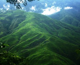 North East India: Aoling Festival Tour