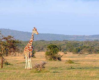 Kenya Adventure Camping