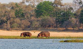 Lower Zambezi Short Break