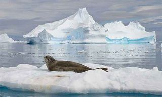 Crossing The Polar Circle