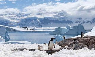 Great Antarctic Voyage
