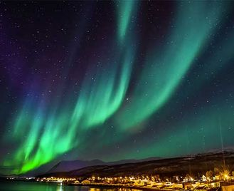 Norway'S Winter Wildlife & Northern Lights (Was Norway: Whales & Northern Lights)