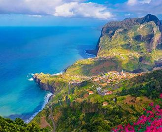 Birds, Whales & Dolphins Of Madeira