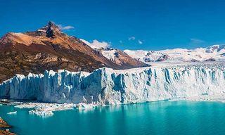 Wildlife & Glaciers Of Patagonia