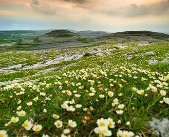 The Burren & Aran Islands
