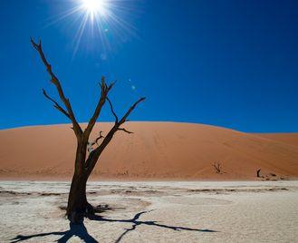 Namibia & Zambezi