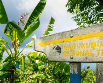 Trek The Waitukubuli National Trail Dominica