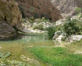 Oman Cultural Adventure
